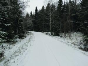 Vinterbilder 17 088